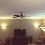 Finished Ceiling Fan Install